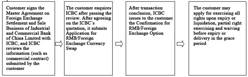Ix Business Case 1 Call Option An Enterprise Needs To Make Import Payment In Usd One Month Hedge Against Reciation Risk